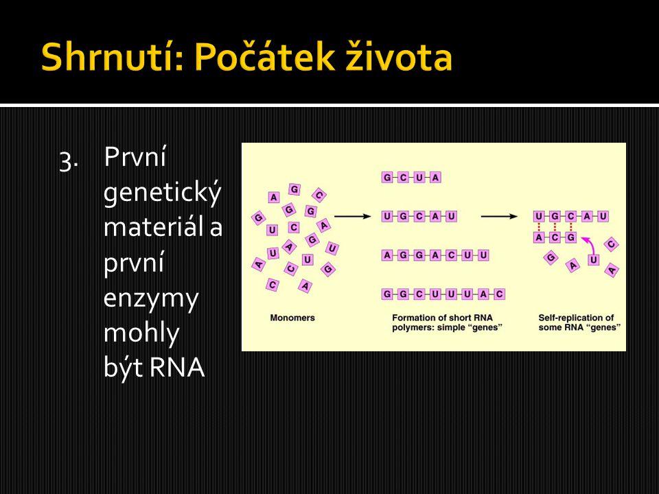 3. První genetický materiál a první enzymy mohly být RNA