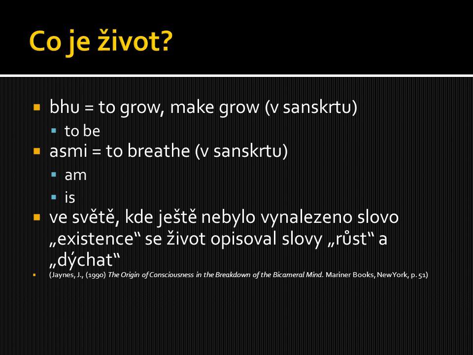""" bhu = to grow, make grow (v sanskrtu)  to be  asmi = to breathe (v sanskrtu)  am  is  ve světě, kde ještě nebylo vynalezeno slovo """"existence"""" s"""