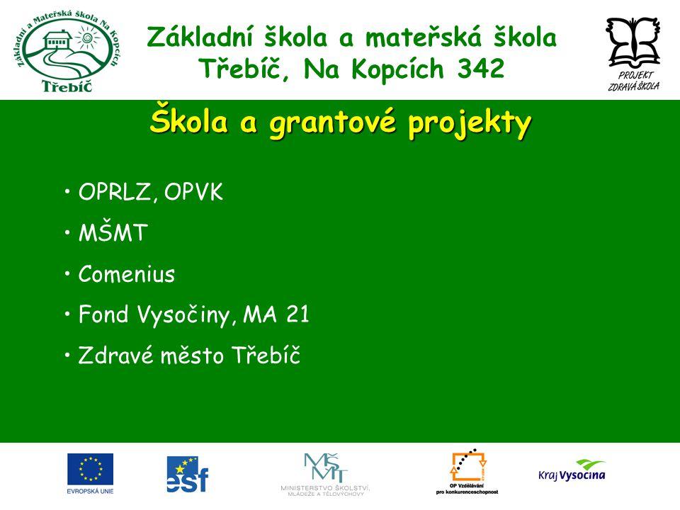 Škola a grantové projekty • OPRLZ, OPVK • MŠMT • Comenius • Fond Vysočiny, MA 21 • Zdravé město Třebíč