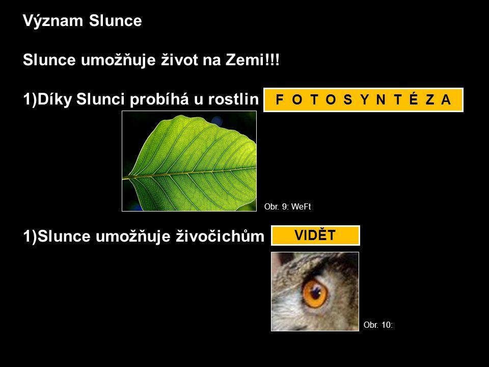 Význam Slunce Slunce umožňuje život na Zemi!!! 1)Díky Slunci probíhá u rostlin _ _ T _ _ Y _ _ É _ _ 1)Slunce umožňuje živočichům _ _ _ _ _ F O T O S