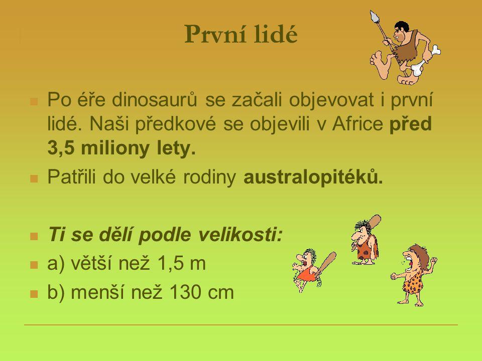 První lidé  Po éře dinosaurů se začali objevovat i první lidé. Naši předkové se objevili v Africe před 3,5 miliony lety.  Patřili do velké rodiny au