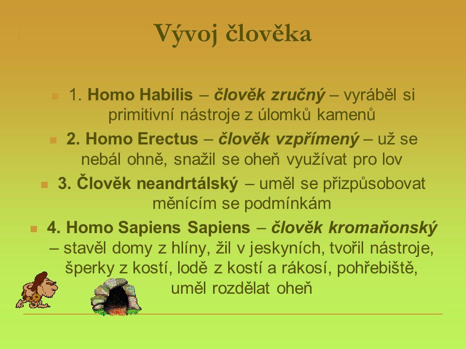 Vývoj člověka  1. Homo Habilis – člověk zručný – vyráběl si primitivní nástroje z úlomků kamenů  2. Homo Erectus – člověk vzpřímený – už se nebál oh