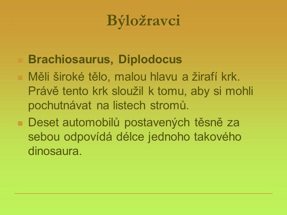 Býložravci  Brachiosaurus, Diplodocus  Měli široké tělo, malou hlavu a žirafí krk. Právě tento krk sloužil k tomu, aby si mohli pochutnávat na liste
