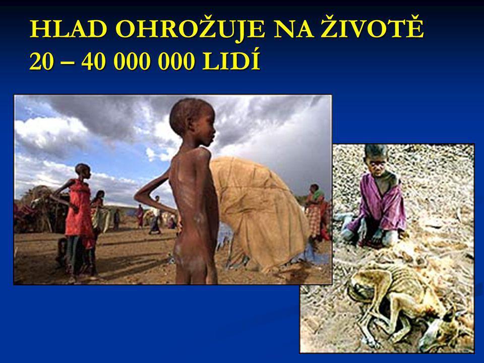 Miliony lidí oslabených hladem zemřou na infekční choroby Nejvíce jsou ohroženy  Děti  Matky  Staří lidé The civil