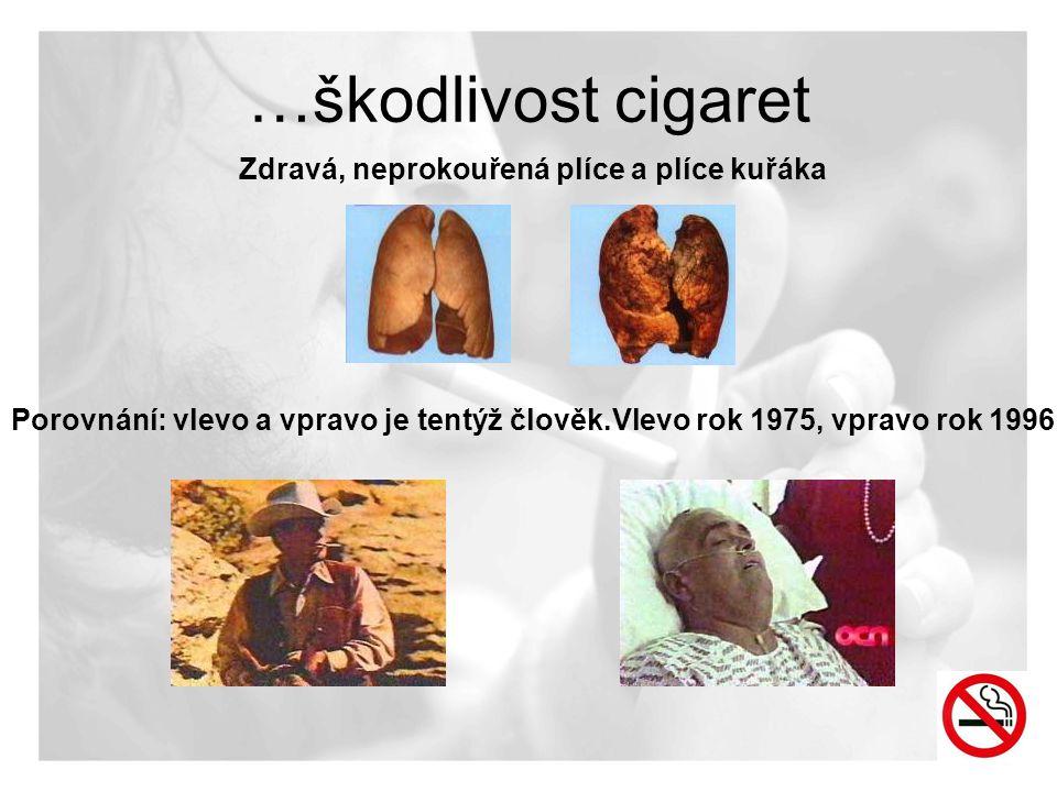 …škodlivost cigaret Zdravá, neprokouřená plíce a plíce kuřáka Porovnání: vlevo a vpravo je tentýž člověk.Vlevo rok 1975, vpravo rok 1996!