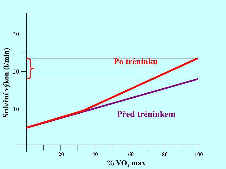 10 20 30 Srdeční výkon (l/min) % VO 2 max 20406080100 Před tréninkem Po tréninku