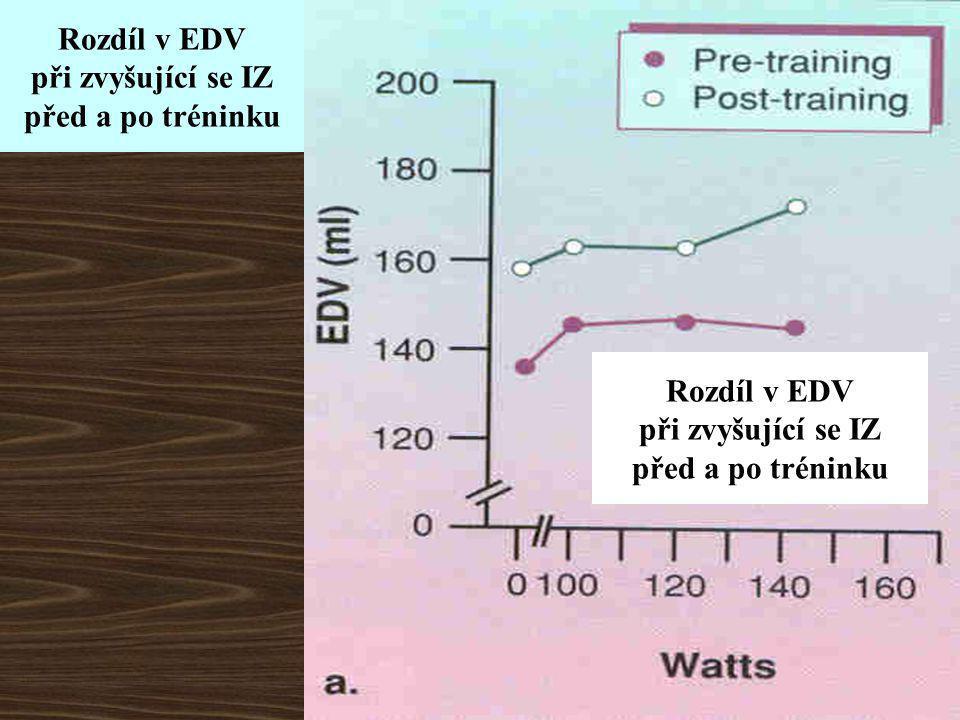 Rozdíl v EDV při zvyšující se IZ před a po tréninku Rozdíl v EDV při zvyšující se IZ před a po tréninku