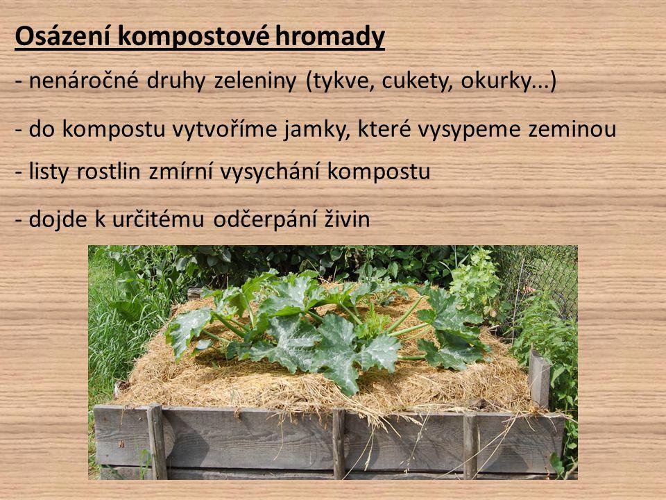 Osázení kompostové hromady - nenáročné druhy zeleniny (tykve, cukety, okurky...) - do kompostu vytvoříme jamky, které vysypeme zeminou - listy rostlin
