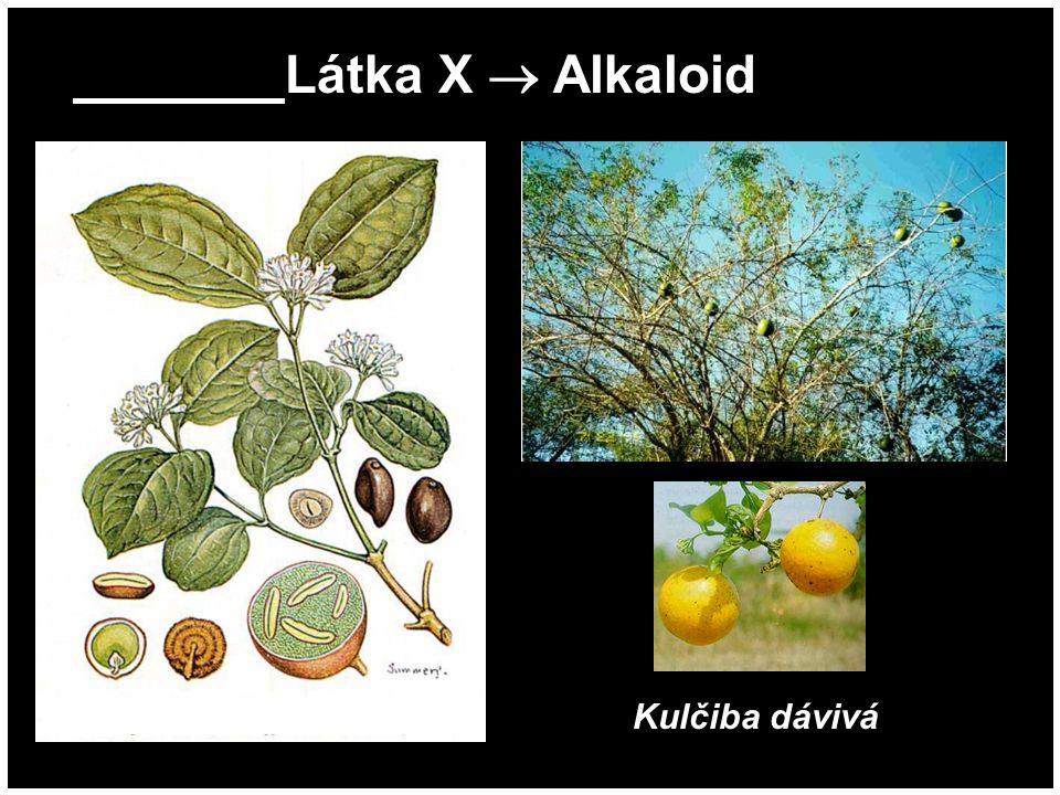 Látka X  Alkaloid Kulčiba dávivá