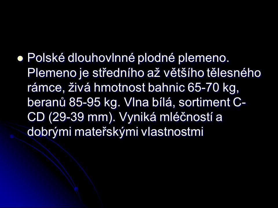  Polské dlouhovlnné plodné plemeno. Plemeno je středního až většího tělesného rámce, živá hmotnost bahnic 65-70 kg, beranů 85-95 kg. Vlna bílá, sorti
