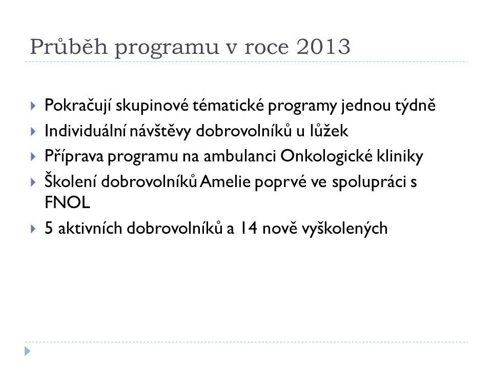 Průběh programu v roce 2013  Pokračují skupinové tématické programy jednou týdně  Individuální návštěvy dobrovolníků u lůžek  Příprava programu na