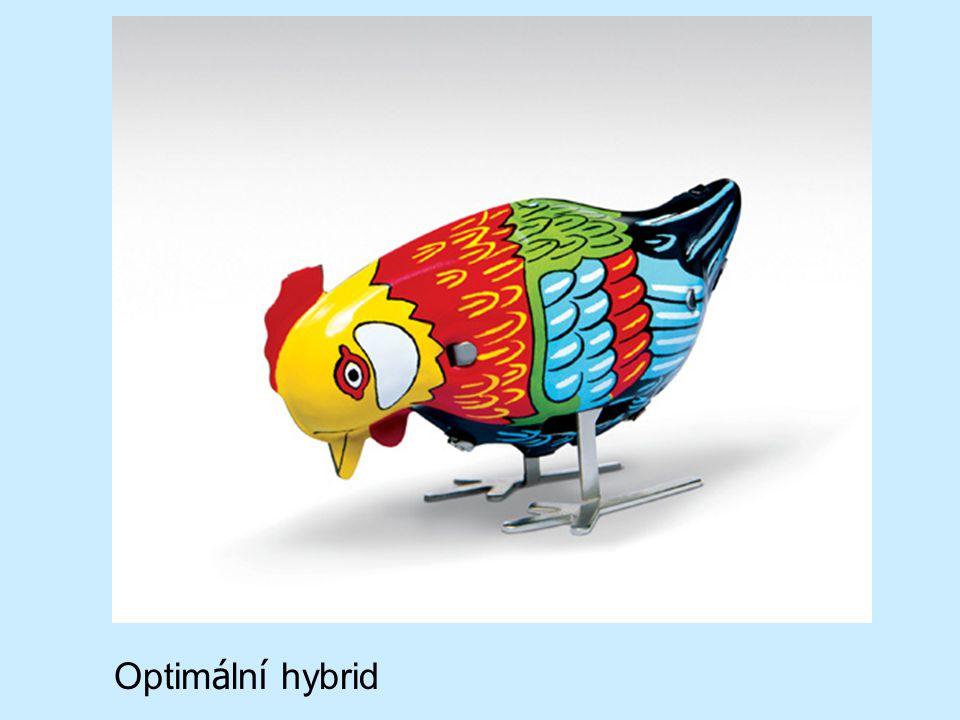 Optim á ln í hybrid