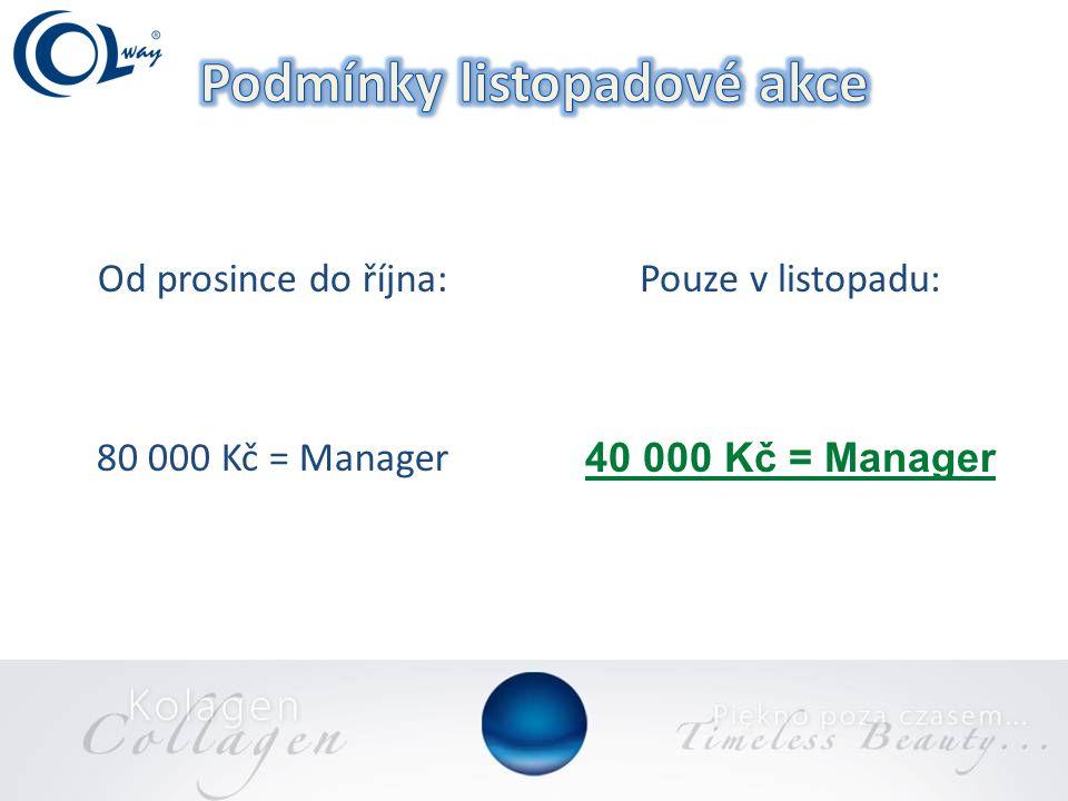 Od prosince do října: 80 000 Kč = Manager Pouze v listopadu: 40 000 Kč = Manager