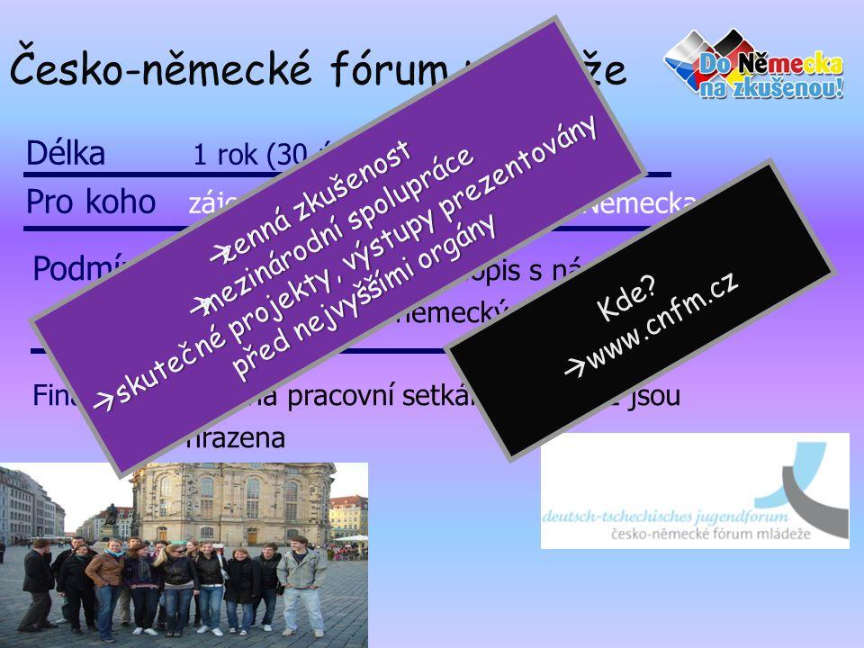 Česko-německé fórum mládeže Délka 1 rok (30 účastníků) Pro koho zájemce od 16-26 let z Čech a Německa Podmínky životopis, motivační dopis s nápady na zlepšení česko-německých vztahů Finance všechna pracovní setkání v ČR i DE jsou hrazena  cenná zkušenost  mezinárodní spolupráce  skutečné projekty, výstupy prezentovány před nejvyššími orgány Kde.