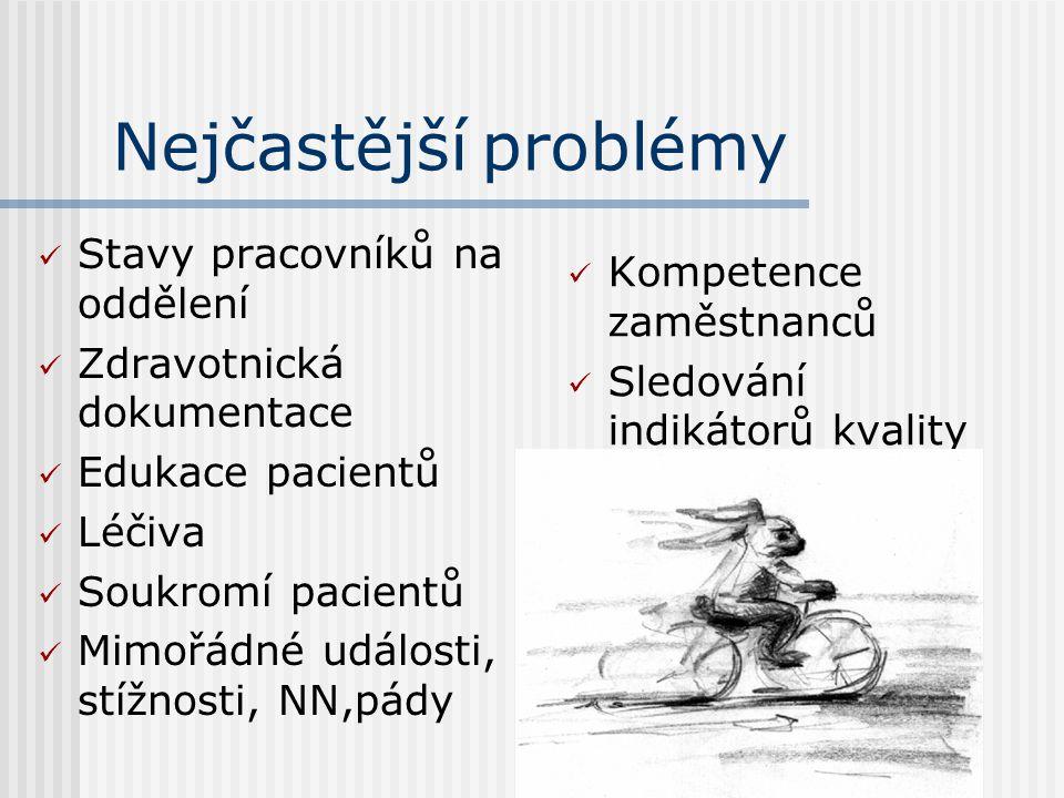 Nejčastější problémy  Stavy pracovníků na oddělení  Zdravotnická dokumentace  Edukace pacientů  Léčiva  Soukromí pacientů  Mimořádné události, stížnosti, NN,pády  Kompetence zaměstnanců  Sledování indikátorů kvality
