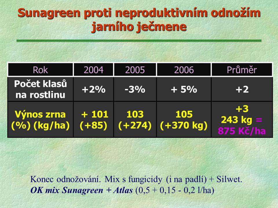 Rok200420052006Průměr Počet klasů na rostlinu +2%-3%+ 5%+2 Výnos zrna (%) (kg/ha) + 101 (+85) 103 (+274) 105 (+370 kg) +3 243 kg = 875 Kč/ha Sunagreen