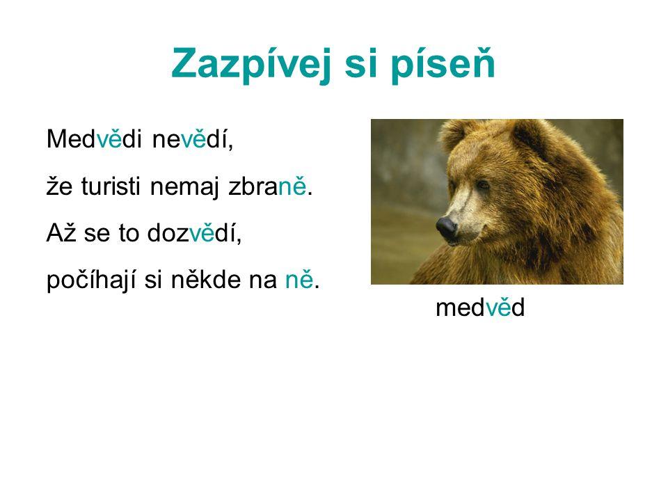Zazpívej si píseň Medvědi nevědí, že turisti nemaj zbraně.