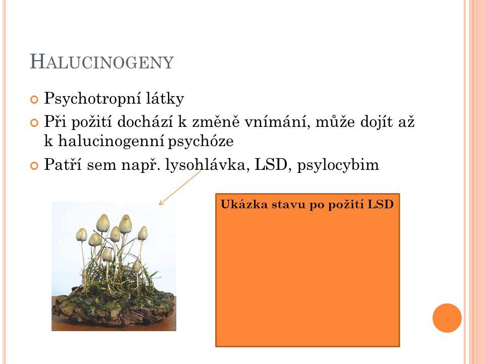H ALUCINOGENY Psychotropní látky Při požití dochází k změně vnímání, může dojít až k halucinogenní psychóze Patří sem např.