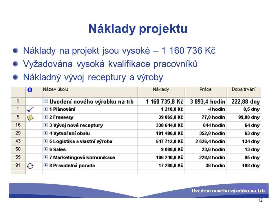 Uvedení nového výrobku na trh Náklady projektu Náklady na projekt jsou vysoké – 1 160 736 Kč Vyžadována vysoká kvalifikace pracovníků Nákladný vývoj r
