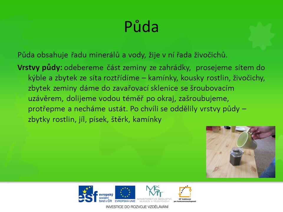 • Hnijící odpad – zetlelé rostliny a živočichové tvoří v půdě výživnou směs a tvoří tak základ pro další rostliny.