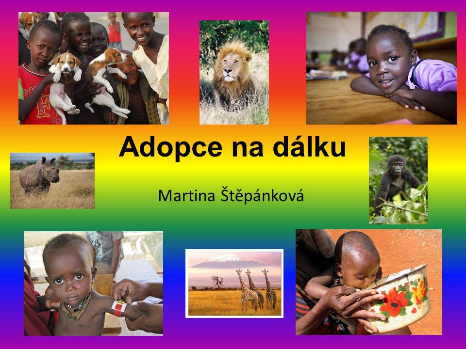 Adopce na dálku Martina Štěpánková