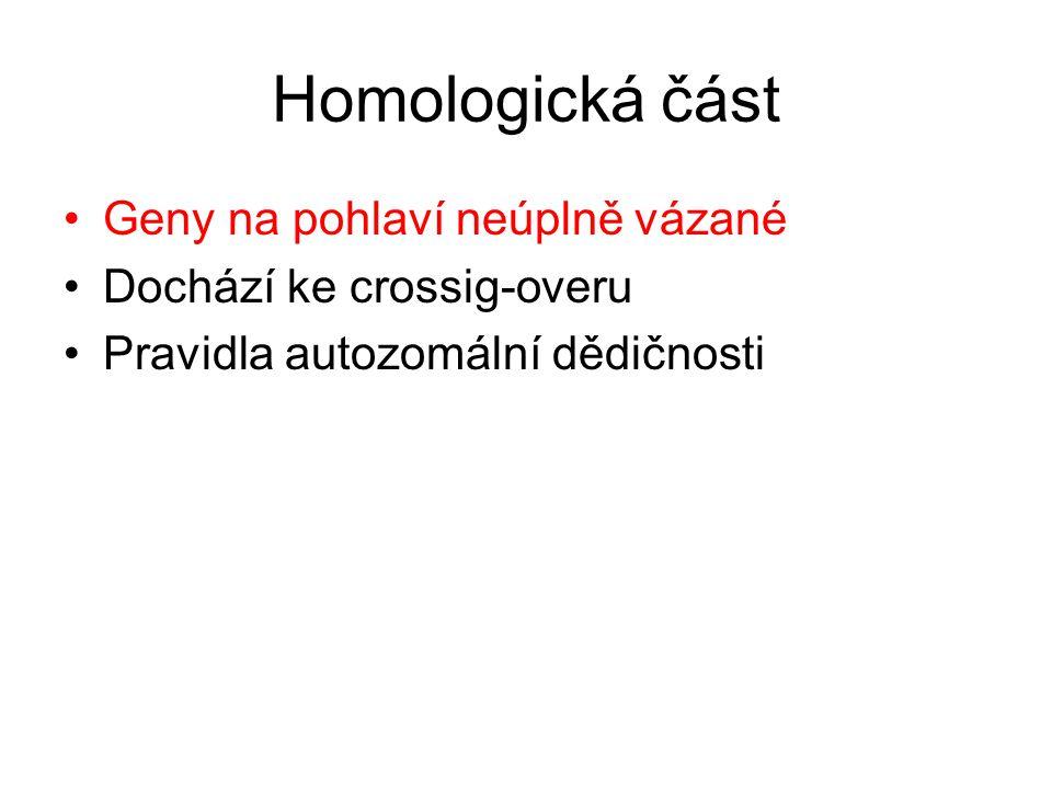 Homologická část •Geny na pohlaví neúplně vázané •Dochází ke crossig-overu •Pravidla autozomální dědičnosti