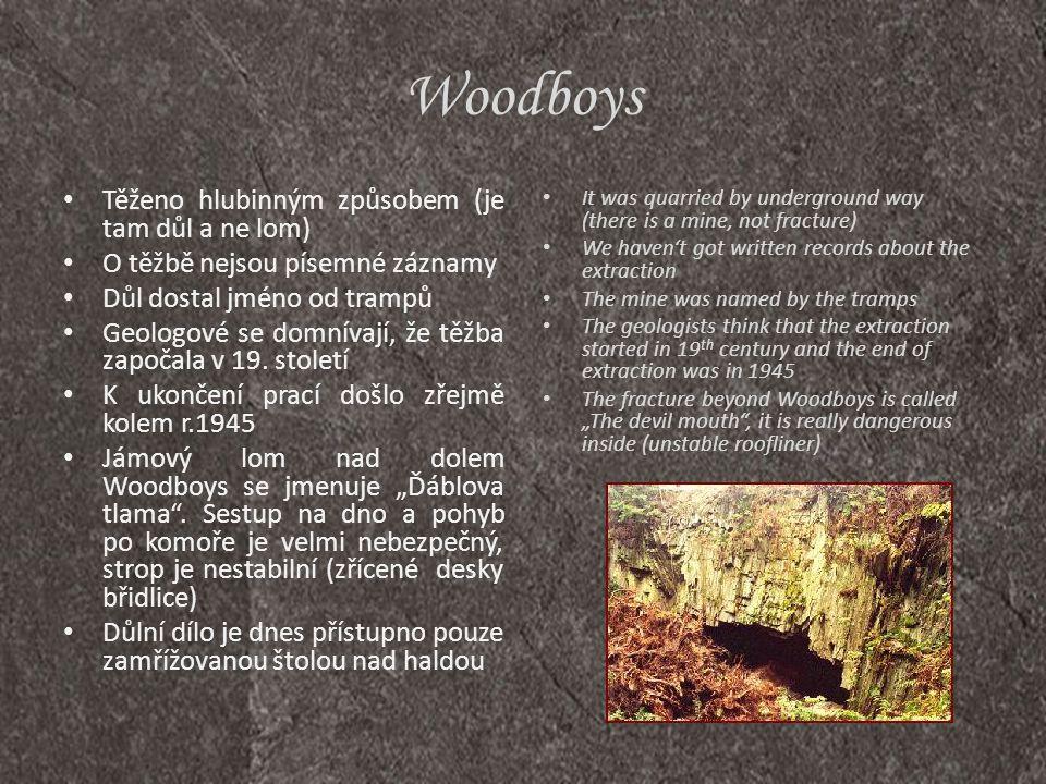 Lesní Zátiší • Břidlicový důl Staré Oldřůvky leží na levém břehu údolí Budišovky • Původní německý název je Waldfrieden • Přibližný počátek těžby je okolo roku 1835 • Až do konce 2.