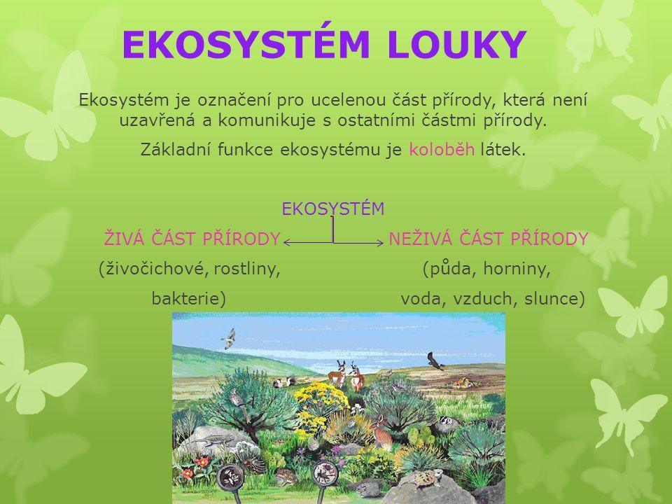 EKOSYSTÉM LOUKY Ekosystém je označení pro ucelenou část přírody, která není uzavřená a komunikuje s ostatními částmi přírody. Základní funkce ekosysté