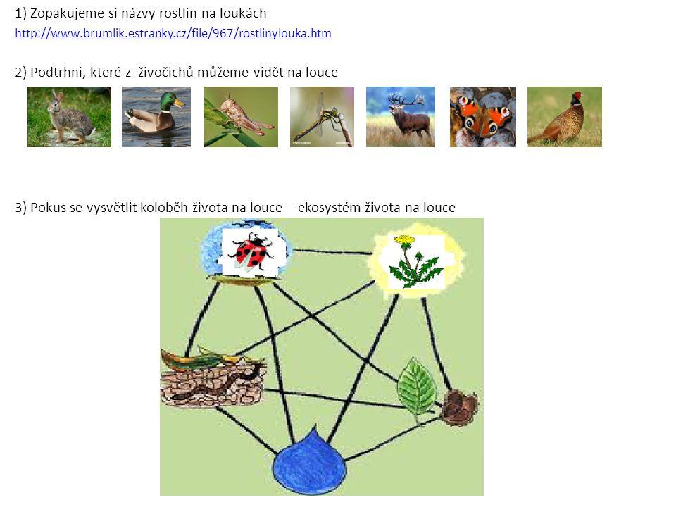1) Zopakujeme si názvy rostlin na loukách http://www.brumlik.estranky.cz/file/967/rostlinylouka.htm 2) Podtrhni, které z živočichů můžeme vidět na lou