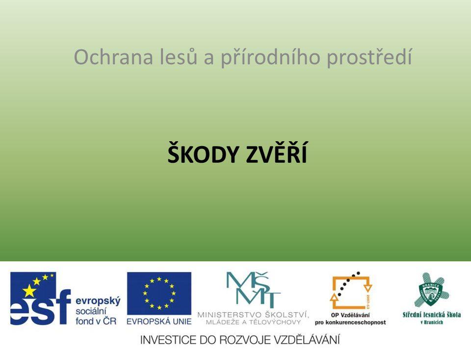 ŠKODY ZVĚŘÍ Ochrana lesů a přírodního prostředí