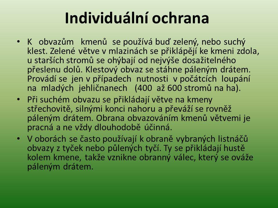Individuální ochrana • K obvazům kmenů se používá buď zelený, nebo suchý klest.