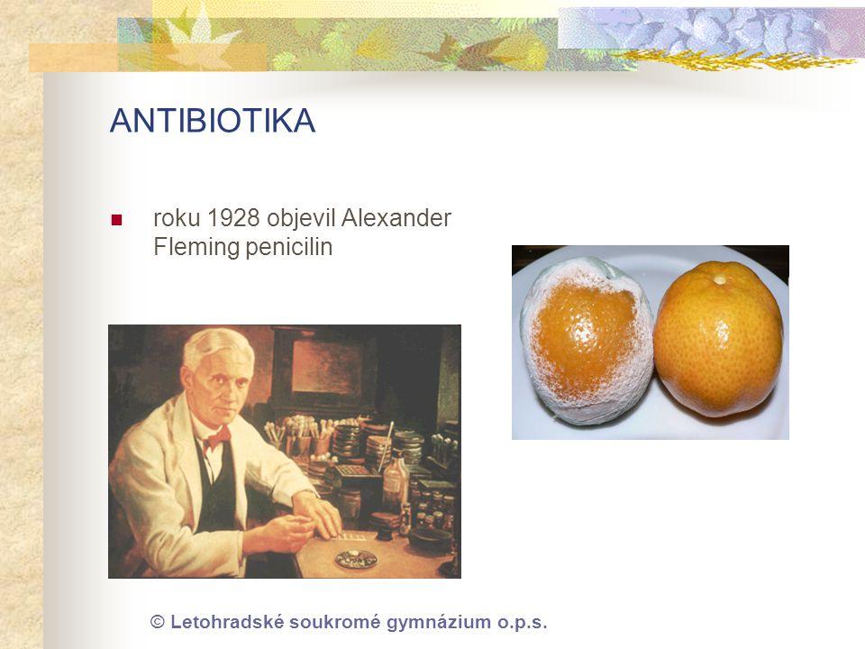 © Letohradské soukromé gymnázium o.p.s. ANTIBIOTIKA  roku 1928 objevil Alexander Fleming penicilin