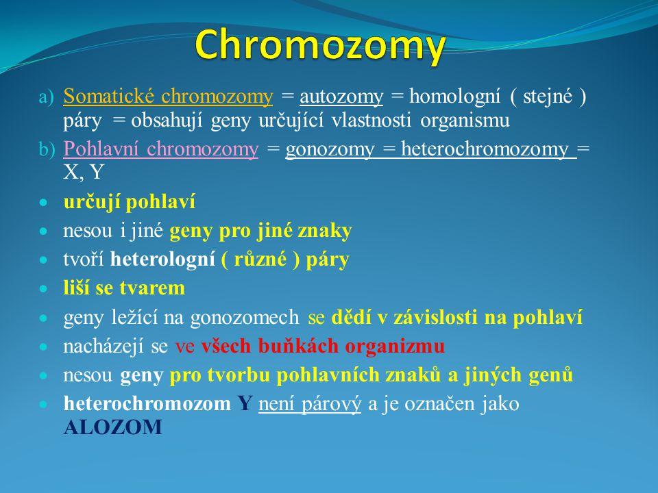  geneticky významné jsou geny ležící v heterologní části chromozomu X  X chromozomová dědičnost ( u člověka je asi 50 genů )  geny lokalizované v heterologní části chromozomu X mohou mít alely recesivní, nebo dominantní  geny ležící na heterologní části ( proběhl CO) chromozomu X a Y jsou na pohlaví vázané !!.