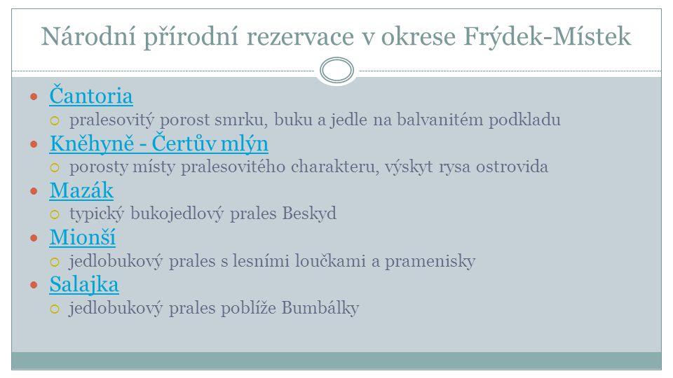 Mazák http://upload.wikimedia.org/wikipedia/commons/thumb/4/47/Lys%C3%A1_hora%2C_PR_Maz%C3%A1k%2C_Moravskoslezsk%C3%A9_B eskydy_%282%29.JPG/800px-Lys%C3%A1_hora%2C_PR_Maz%C3%A1k%2C_Moravskoslezsk%C3%A9_Beskydy_%282%29.JPG