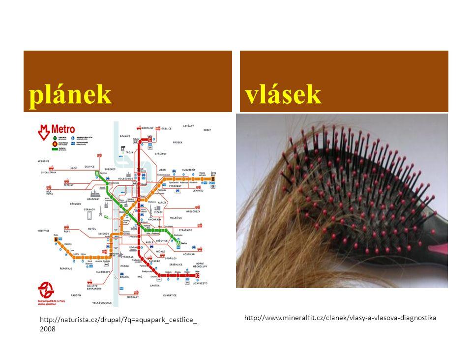 plánekvlásek http://www.mineralfit.cz/clanek/vlasy-a-vlasova-diagnostika http://naturista.cz/drupal/?q=aquapark_cestlice_ 2008
