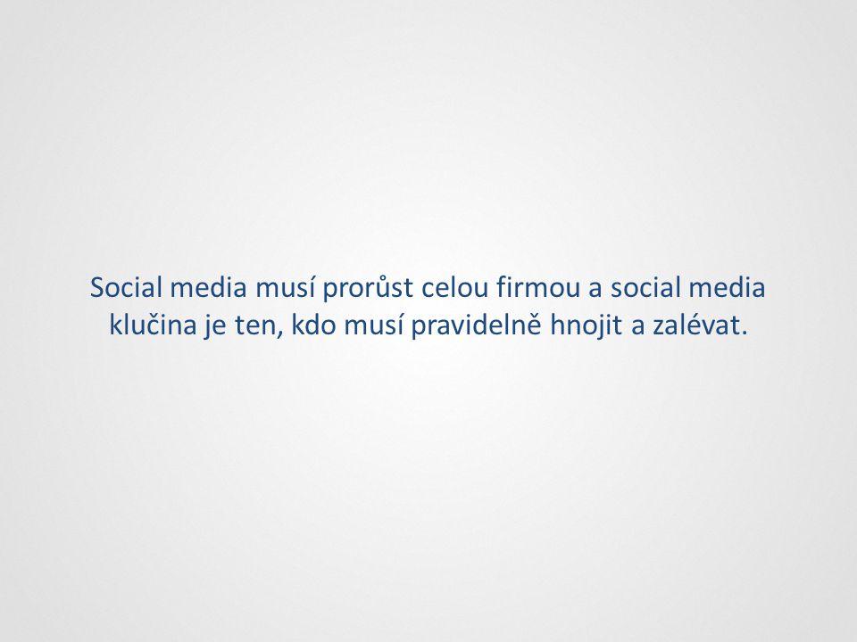 Social media musí prorůst celou firmou a social media klučina je ten, kdo musí pravidelně hnojit a zalévat.