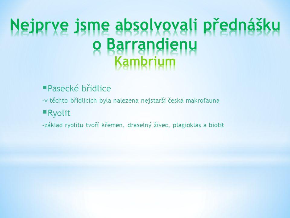  Pasecké břidlice -v těchto břidlicích byla nalezena nejstarší česká makrofauna  Ryolit -základ ryolitu tvoří křemen, draselný živec, plagioklas a b