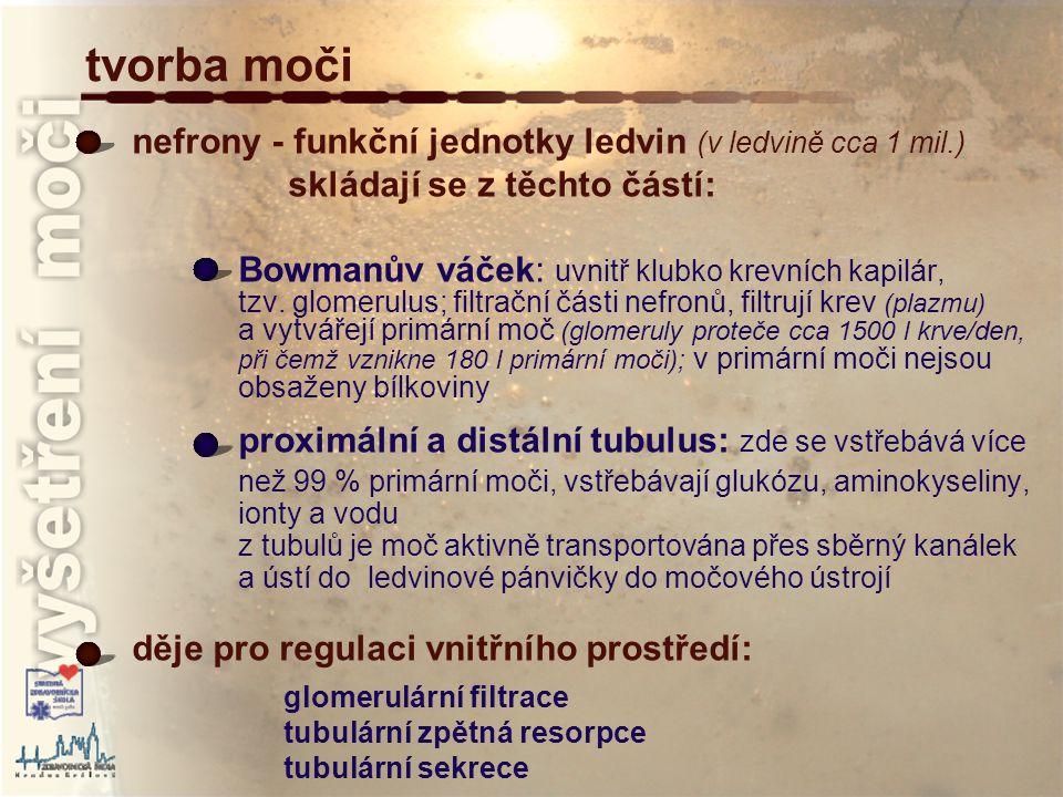 erytrocyty převzato z : http://www.mnof.cz/sediment/ vyšetření močového sedimentu