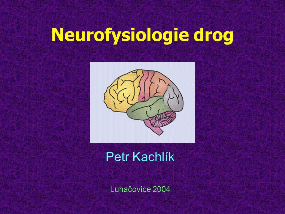 Přirozené tlumení bolesti •předávání bolestivých podnětů z jednoho neuronu na druhý umožňuje substance P •axon obsahuje receptory pro substanci P i pro opiáty •substance P skladována ve vesikulech •podnět ji uvolní do synapse, substance P se váže na receptory, tak se signál přenese