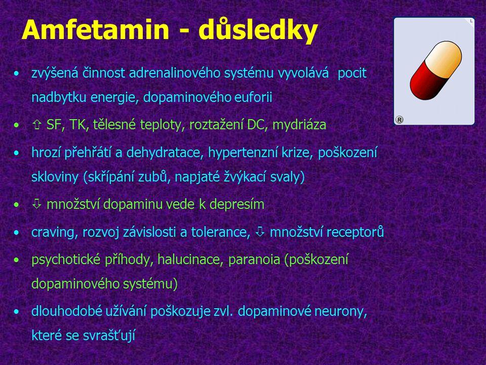 Amfetamin - důsledky •zvýšená činnost adrenalinového systému vyvolává pocit nadbytku energie, dopaminového euforii •  SF, TK, tělesné teploty, roztaž