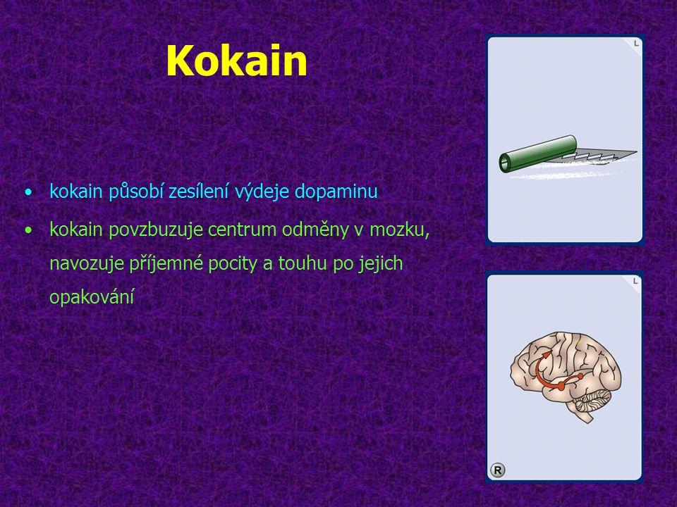 Kokain •kokain působí zesílení výdeje dopaminu •kokain povzbuzuje centrum odměny v mozku, navozuje příjemné pocity a touhu po jejich opakování