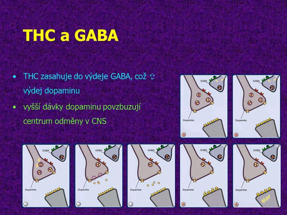 THC a GABA •THC zasahuje do výdeje GABA, což  výdej dopaminu •vyšší dávky dopaminu povzbuzují centrum odměny v CNS