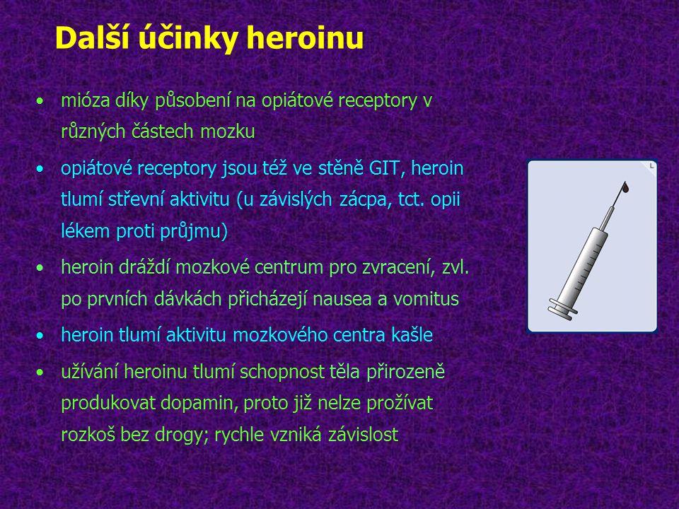 Další účinky heroinu •mióza díky působení na opiátové receptory v různých částech mozku •opiátové receptory jsou též ve stěně GIT, heroin tlumí střevn