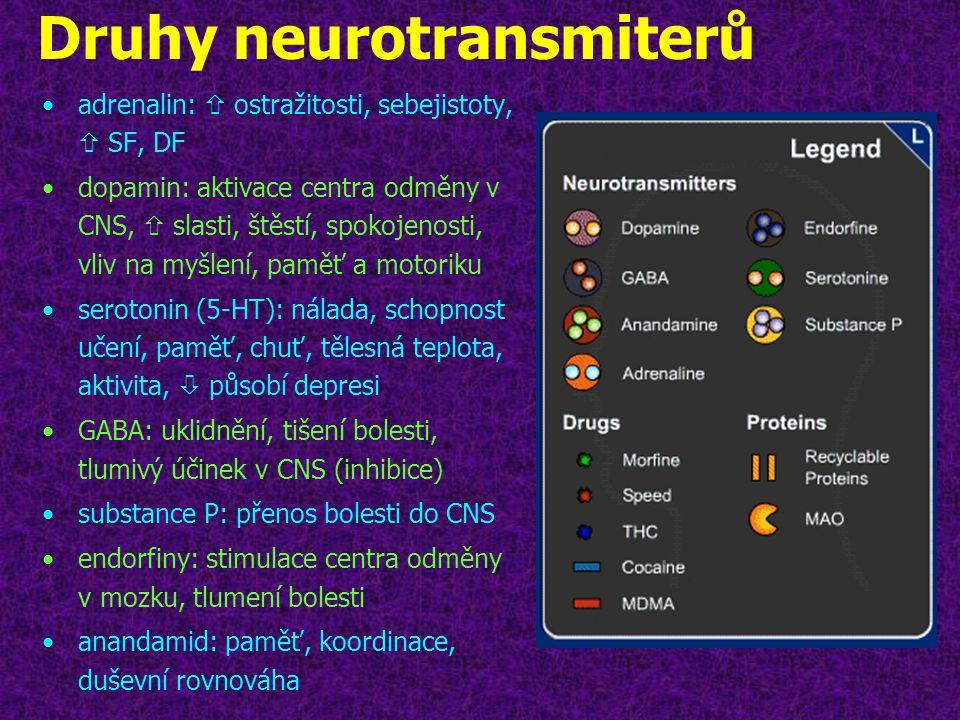 Druhy neurotransmiterů •adrenalin:  ostražitosti, sebejistoty,  SF, DF •dopamin: aktivace centra odměny v CNS,  slasti, štěstí, spokojenosti, vliv