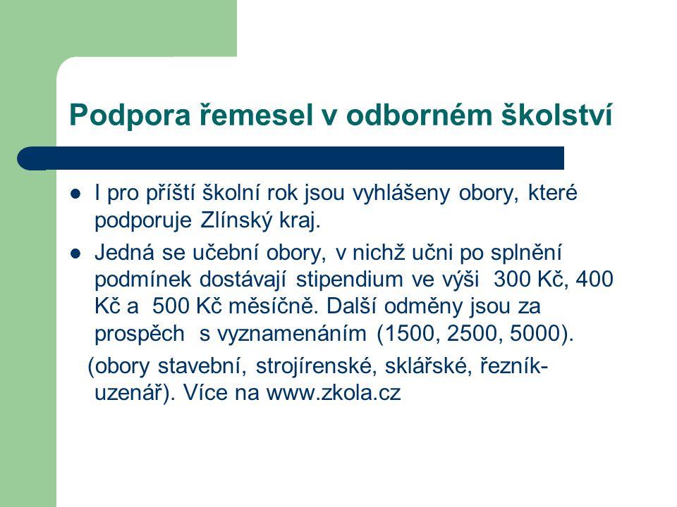Podpora řemesel v odborném školství  I pro příští školní rok jsou vyhlášeny obory, které podporuje Zlínský kraj.