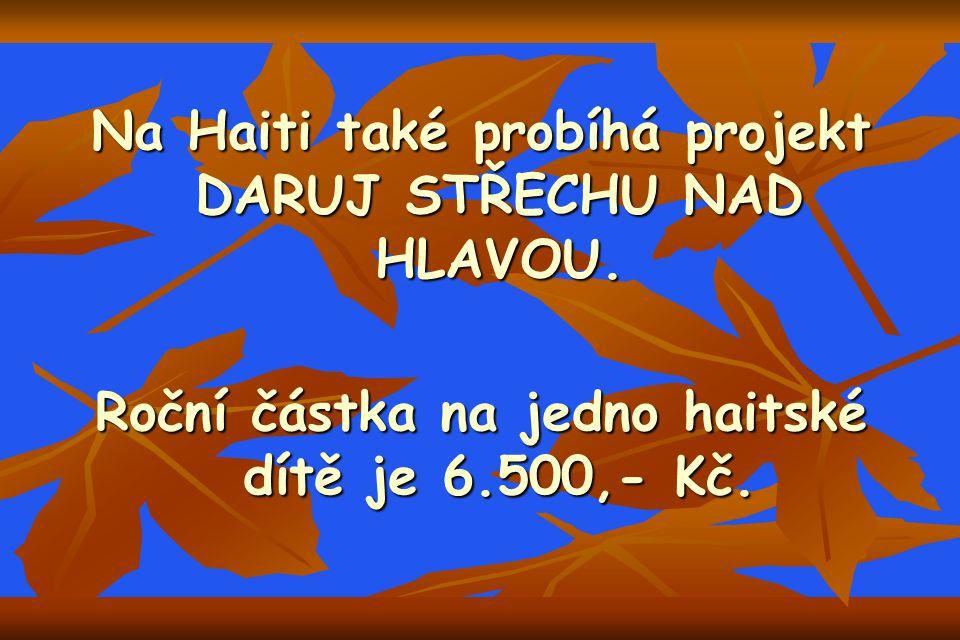 Na Haiti také probíhá projekt DARUJ STŘECHU NAD HLAVOU.
