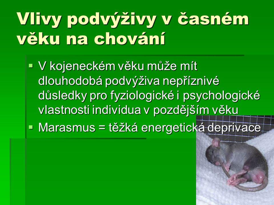 Vlivy podvýživy v časném věku na chování  V kojeneckém věku může mít dlouhodobá podvýživa nepříznivé důsledky pro fyziologické i psychologické vlastnosti individua v pozdějším věku  Marasmus = těžká energetická deprivace