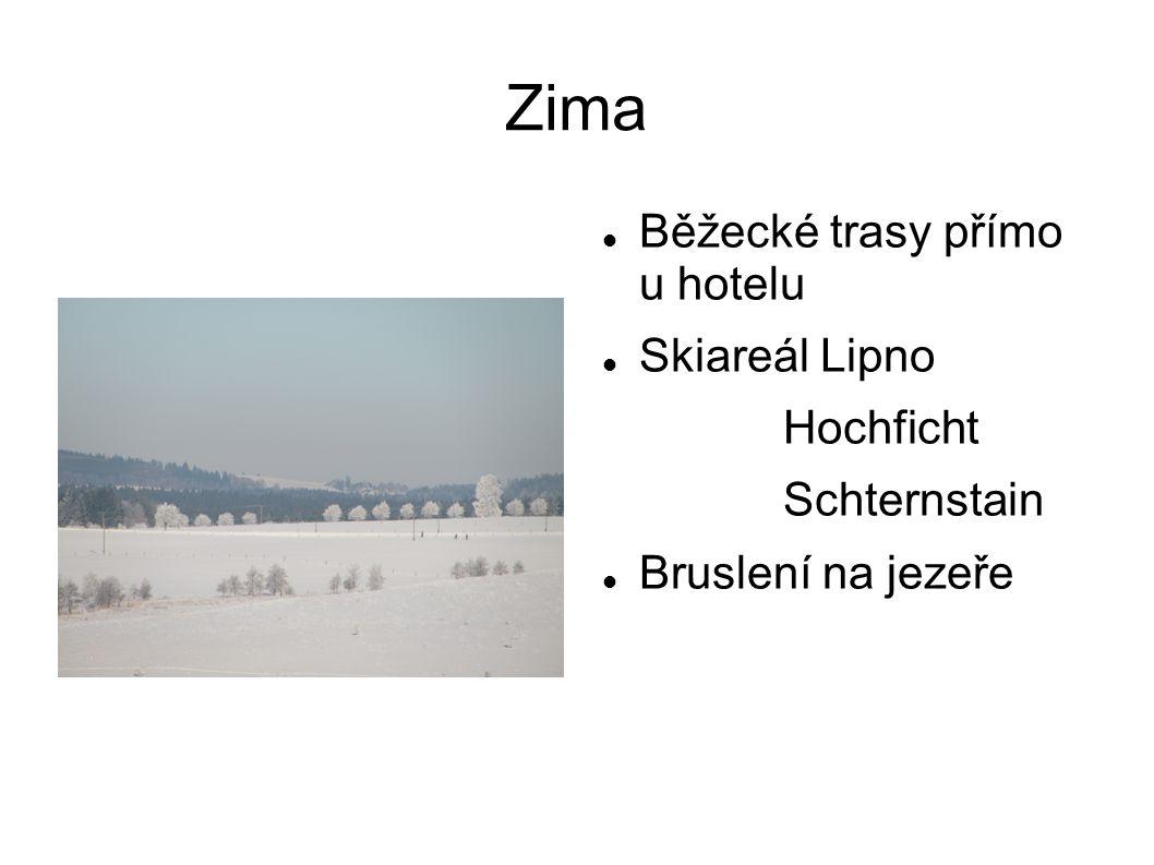 Zima  Běžecké trasy přímo u hotelu  Skiareál Lipno Hochficht Schternstain  Bruslení na jezeře