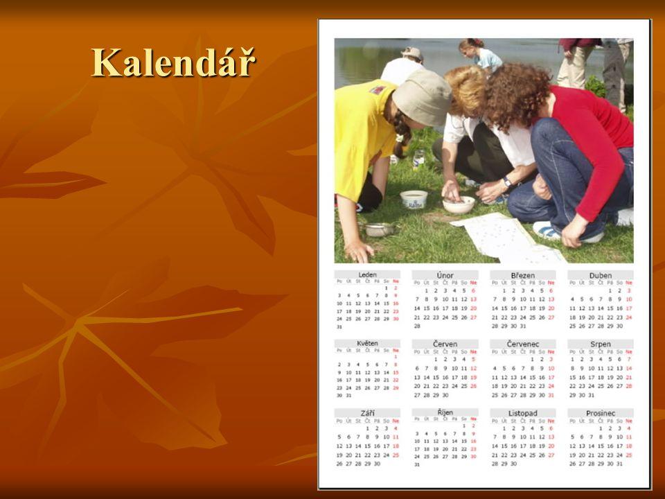 Den jazyků 2005  mezipředmětový projekt v ZŠ Kopřivnice, Alšova 1123  rozsah: celý 2.