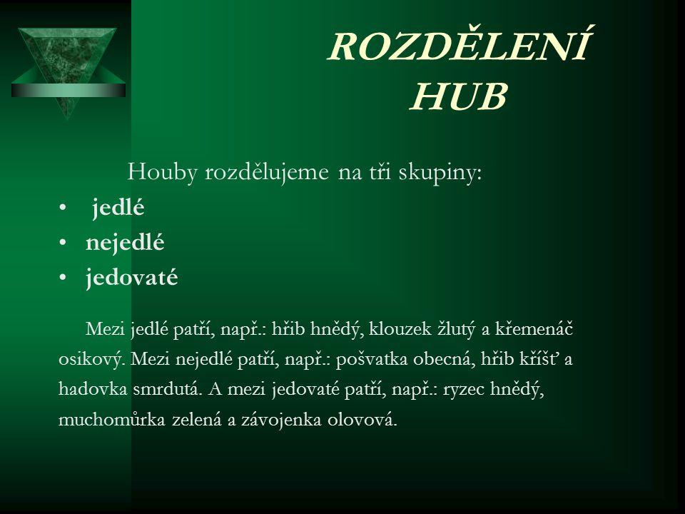 ROZDĚLENÍ HUB Houby rozdělujeme na tři skupiny: • j• jedlé •n•nejedlé •j•jedovaté Mezi jedlé patří, např.: hřib hnědý, klouzek žlutý a křemenáč osikový.